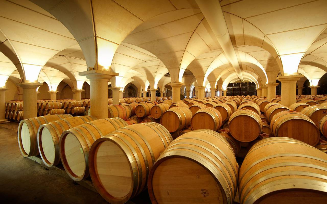 Barrels, activities stay in the Hautes Pyrenees, Vinuales Hotels